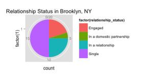 Pie Chart, Brooklyn, NY